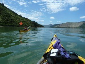 kayaking marlborough sounds